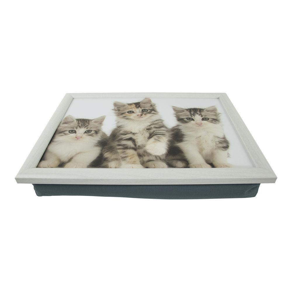 Mars en More schootkussen Kittens met wit frame