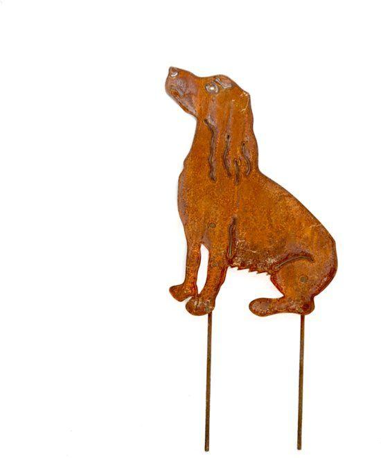 Gazonsteker-hond