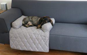 Hondenkussen-bank-bescherming-bank-small