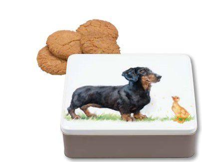Teckel met Eend koekblik naast koekjes
