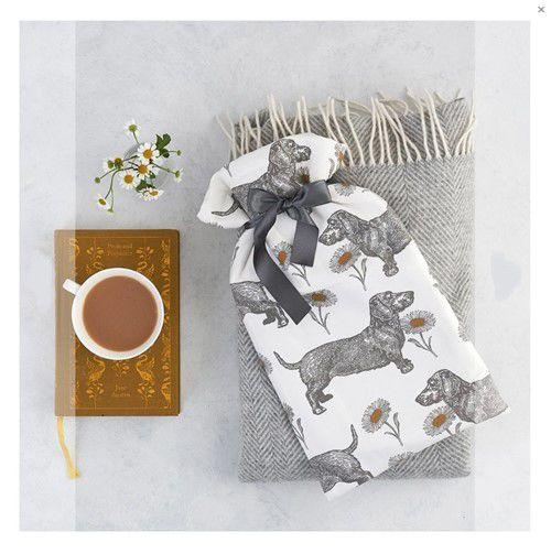 Teckel en Madeliefjes kruik boven een deken met een kopje thee
