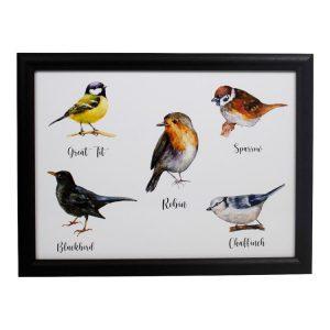 Schootkussen-Vogels